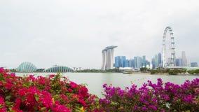 Cityview di Singapore con opacità dei fiori al rallentatore archivi video