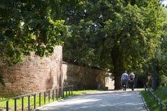 Citywall medievale Rostock Fotografia Stock Libera da Diritti