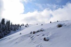 CiucaÈ™ im Winter Stockbilder