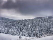 Ciucas-Berg im Dezember stockbild