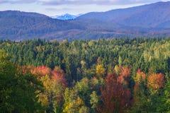 Ciucas góry w jesieni Zdjęcia Stock