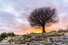 Ciudad antigua de Teos, Esmirna Imagenes de archivo