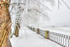 Ciudad central Vyborg Rusia de la 'promenade' Imagen de archivo