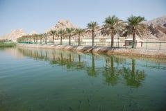 Ciudad de Al Ain Imagenes de archivo