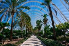 Ciudad de artes y de ciencias Arquitectos Santiago Calatrava y Felix Candela foto de archivo