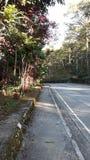Ciudad de Baguio Fotografía de archivo