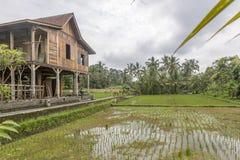 Ciudad de Bali de dioses Imagen de archivo libre de regalías
