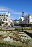 Ciudad de Dunedin Fotos de archivo