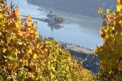 Ciudad de Kaub con las hojas de la uva Fotos de archivo