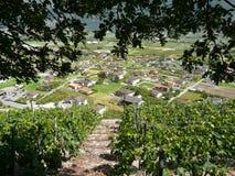 Ciudad de la opinión del saillon de los viñedos Suiza Fotografía de archivo libre de regalías
