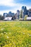Ciudad de la roca de Adrspach de la piedra caliza y lago de la mina - parque nacional de Foto de archivo