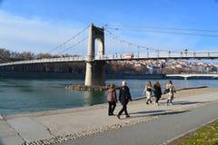 Ciudad de Lyon, de los puentes y del río Rhone fotos de archivo libres de regalías