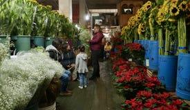 Ciudad de México, México 11 de diciembre de 2017: El mercado Mercado de Jamaica de la flor en Ciudad de México Foto de archivo libre de regalías
