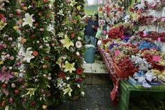 Ciudad de México, México 11 de diciembre de 2017: El mercado Mercado de Jamaica de la flor en Ciudad de México Fotos de archivo libres de regalías