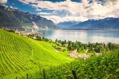 Ciudad de Montreux con las montañas, el lago Lemán y el viñedo suizos en la región de Lavaux, cantón Vaud, Suiza, Europa fotos de archivo