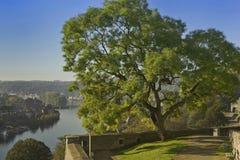 Ciudad de Namur Foto de archivo libre de regalías