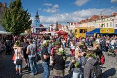Ciudad de Zatec, República Checa - septiembre, 5, 2015: Saltos a del atec del ½ de Å Fotos de archivo