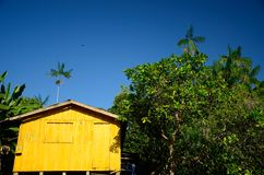 Ciudad del Amazonas fotografía de archivo libre de regalías