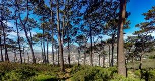 Ciudad del Cabo de la colina de la señal Imagen de archivo libre de regalías