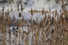 Ciudad del lago winter Foto de archivo libre de regalías