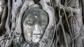 Ciudad del patrimonio mundial de Ayutthaya Imágenes de archivo libres de regalías