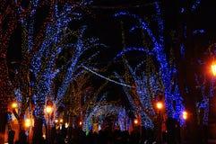 Ciudad festiva de la noche Fotografía de archivo