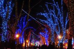 Ciudad festiva de la noche Foto de archivo