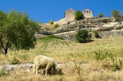 Ciudad-fortaleza medieval en las montañas Imágenes de archivo libres de regalías