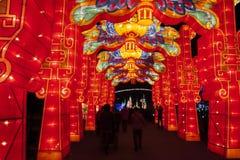 Ciudad internacional 2016 del carnaval de la linterna mágica de Shangai de la luz Fotografía de archivo