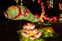Ciudad internacional 2016 del carnaval de la linterna mágica de Shangai de la luz Imagen de archivo libre de regalías