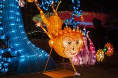 Ciudad internacional 2016 del carnaval de la linterna mágica de Shangai de la luz Fotos de archivo libres de regalías