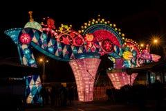 Ciudad internacional 2016 del carnaval de la linterna mágica de Shangai de la luz Foto de archivo