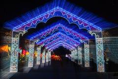 Ciudad internacional 2016 del carnaval de la linterna mágica de Shangai de la luz Fotos de archivo