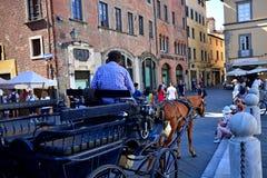 Ciudad Italia de Lucca Imágenes de archivo libres de regalías