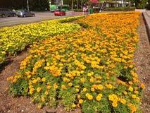 Ciudad jardín, Singapur Imagen de archivo