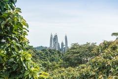 Ciudad moderna y bosque verde en día de primavera Fotos de archivo