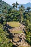 Ciudad Perdida en Colombie Images libres de droits