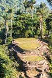 Ciudad Perdida i Colombia Arkivbilder