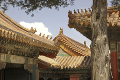 Ciudad prohibida en Pekín Fotografía de archivo