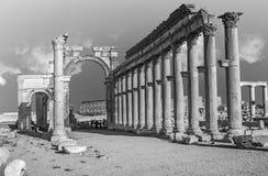Ciudad romana antigua del tiempo en el Palmyra, Siria Fotografía de archivo