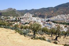 Ciudad santa de Moulay Idris fotos de archivo