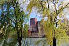 Ciudad a través de árboles Imágenes de archivo libres de regalías