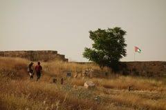 Ciudad vieja de Amman imagen de archivo libre de regalías