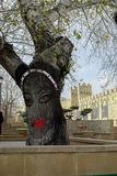 Ciudad vieja de Baku Azerbaijan decoración del árbol de la planta de la pared del arte de la calle imagen femenina de la cara imagen de archivo libre de regalías