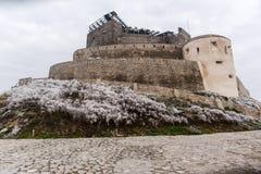 Ciudad vieja de Deva Foto de archivo libre de regalías
