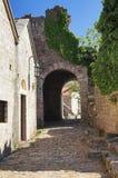 Ciudad vieja de la barra, Montenegro Fotografía de archivo