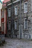 Ciudad vieja de Tallin Fotos de archivo
