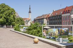 Ciudad vieja de Tallinn Imagenes de archivo