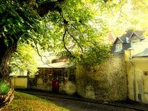 Ciudad vieja medieval Tallinn Imágenes de archivo libres de regalías