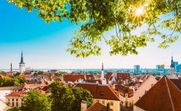 Ciudad vieja Tallinn, Estonia de la ciudad del paisaje escénico de la visión Foto de archivo libre de regalías